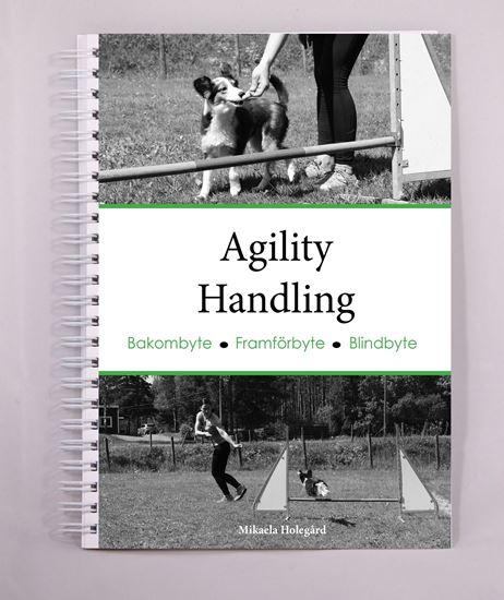 Agility - Handling