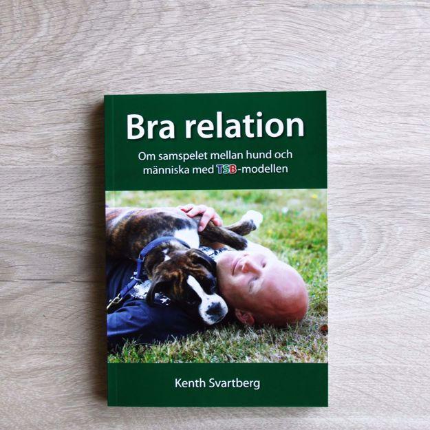 Bra relation - Om samspelet mellan hund och människa med TSB-modellen