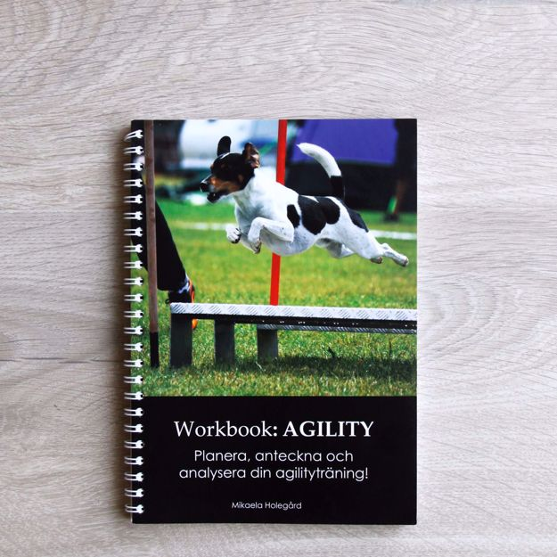 Workbook - Agility
